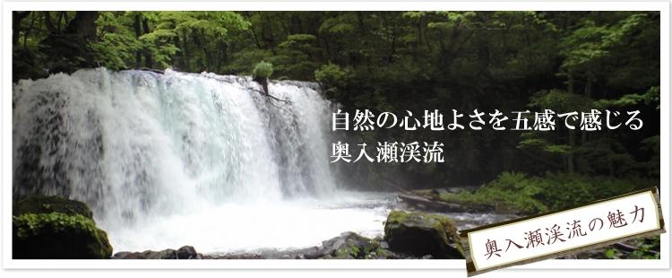 奥入瀬渓流の魅力