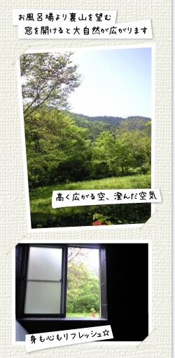 お風呂場より裏山を望む窓を開けると大自然が広がります。